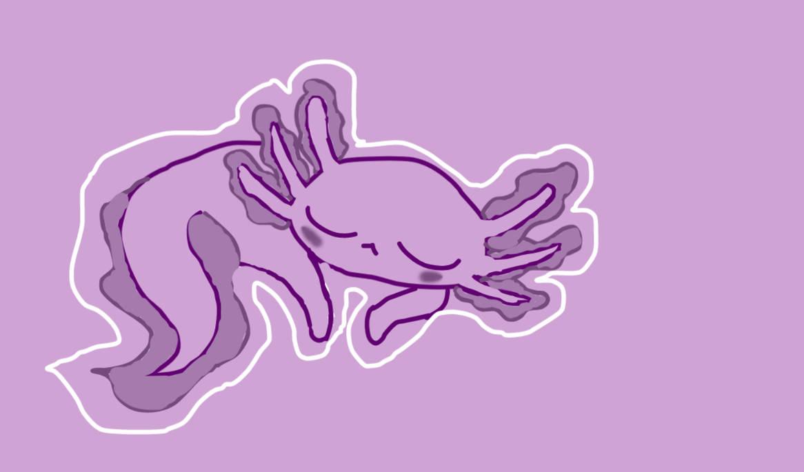 Rando Axolotl I found by Midnite-Wolfe