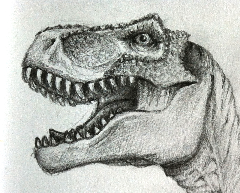Tyrannosaurus rex (head) by EykoArt on DeviantArt