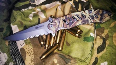 Remington F.A.S.T Clip Point Folder