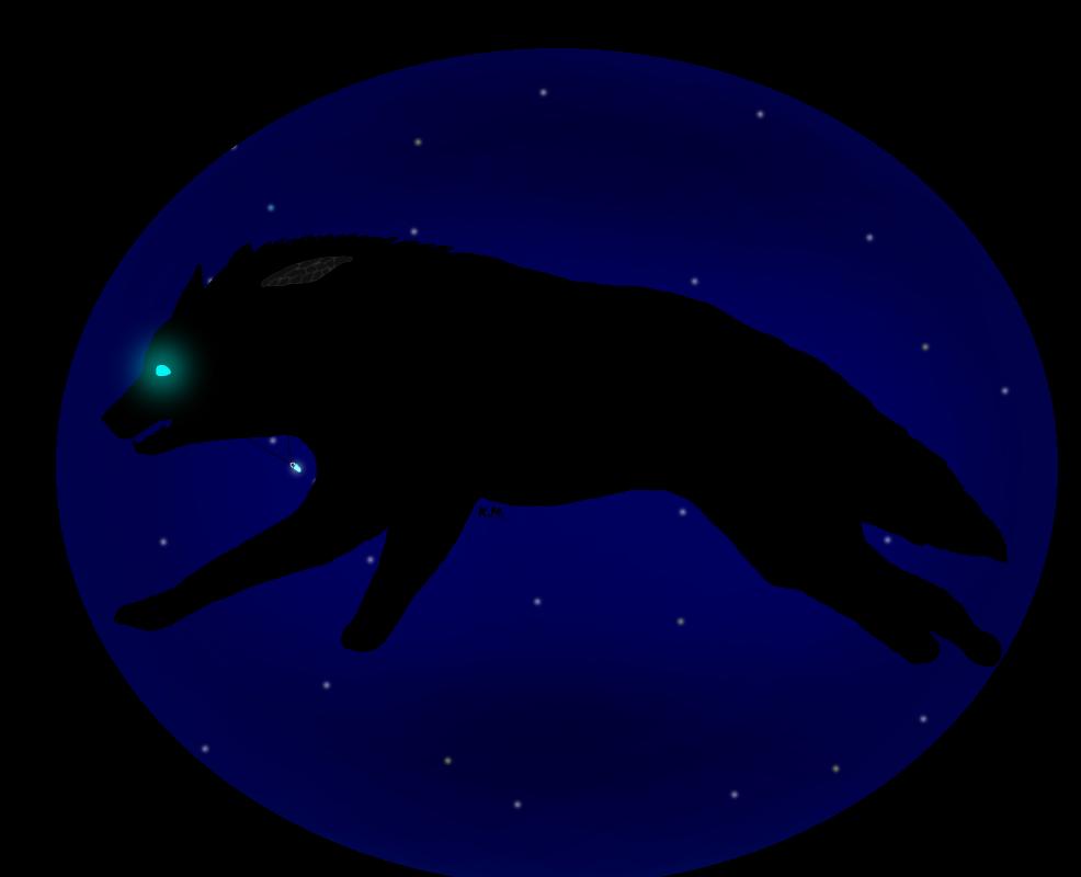xRogueKimbitx's Profile Picture