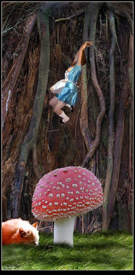 Alice , Down the Rabbit Hole
