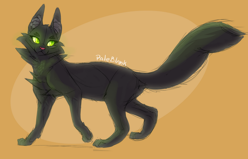 Hollyleaf Deviantart Warriors Cat