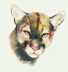 Cougar by PaleBlank