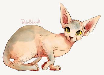 Cat Af by PaleBlank