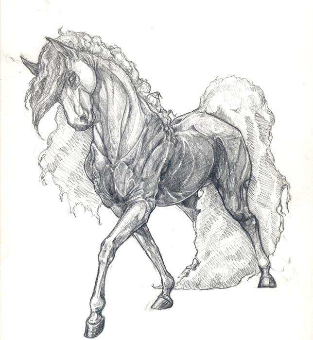 Floofy Horse