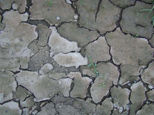 Cracked Ground 1 by zacharysimpson-stock
