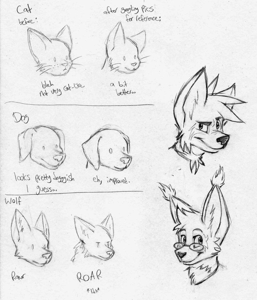 how to draw squirrel anthro