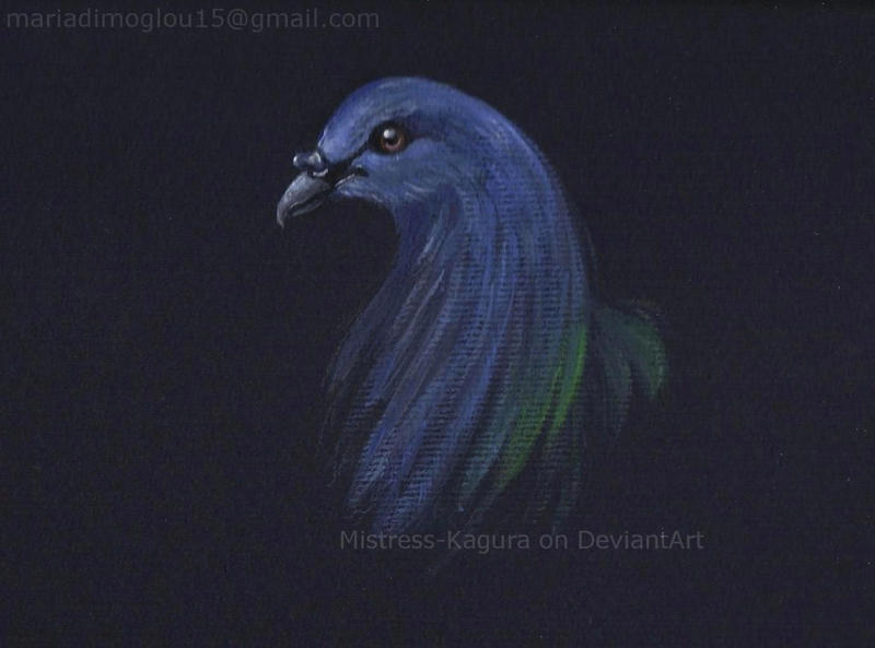 bird study by Mistress-Kagura