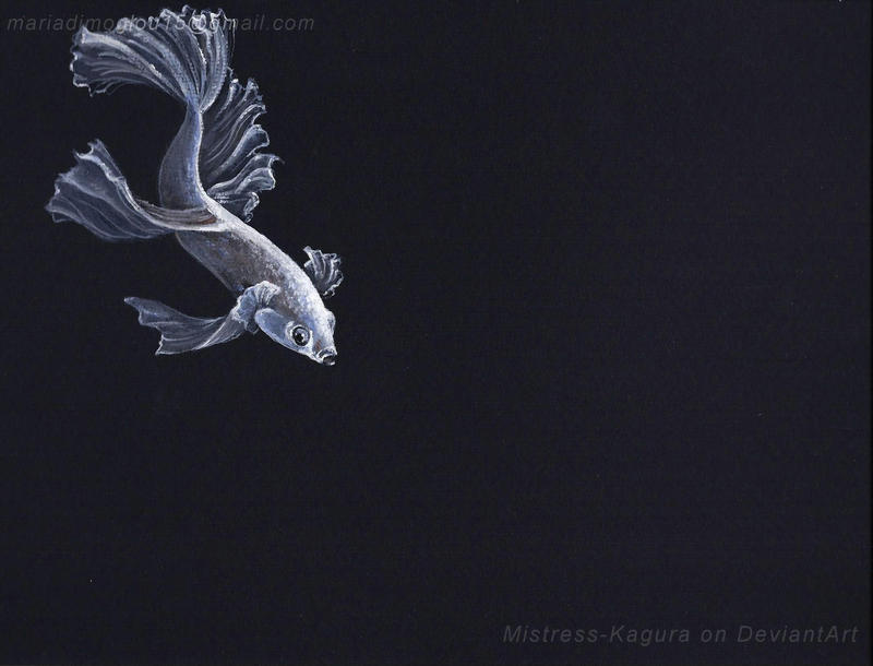 fish study by Mistress-Kagura