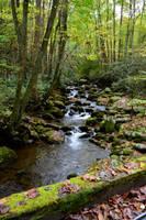 Great Smoky Mountain Stream by Sizzla25