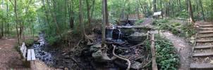 Parkville Nature Sanctuary by Sizzla25