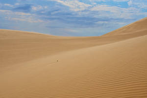 sand dune stock 4 by stockf8