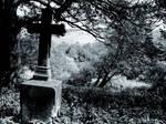 cemetery LXXXI