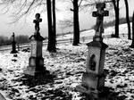 cemetery DDVIII