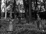 cementary XXXIV