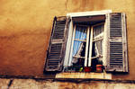 the window. by kamilla-b