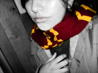 Gryffindor Winter by violetberry
