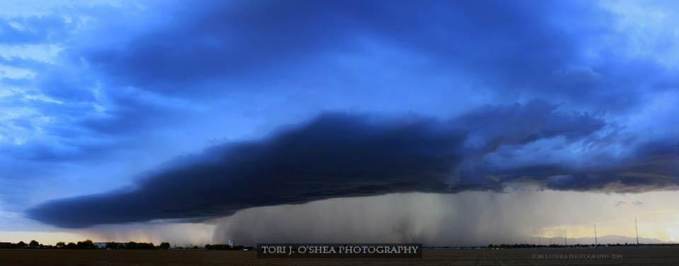 Shelf Cloud over West Phoenix 2014 by thegirlcalledratha