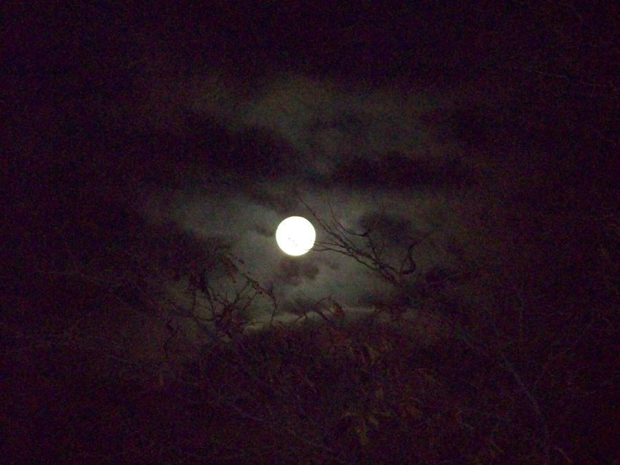 Moon by reddragon1413