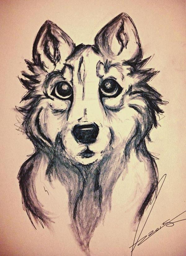 Drawin of a wolf n stuff by animalzamzam
