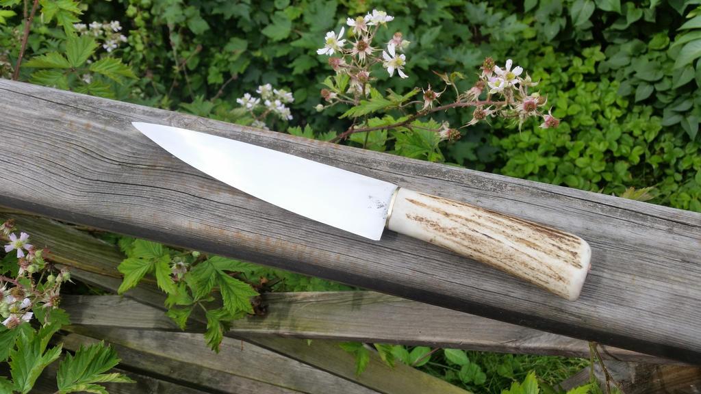 Kitchen Knife by DanoGambler