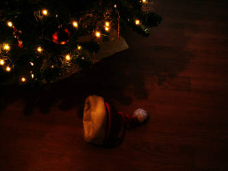 Santa was here? by chiqui2907