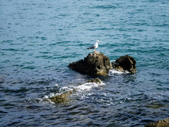 The old man and a sea by chiqui2907