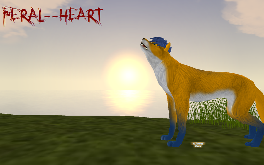 Feral--Heart's Profile Picture