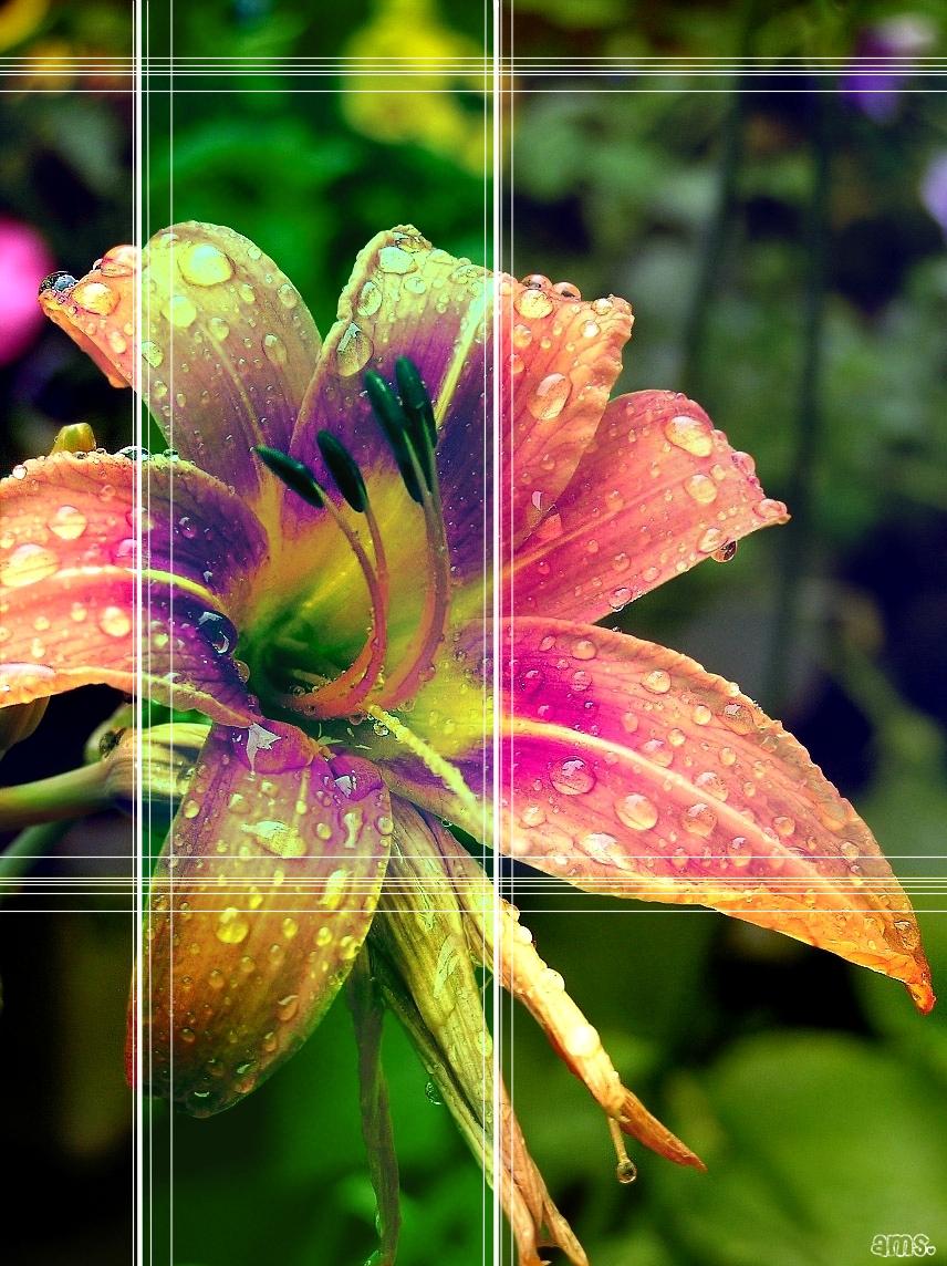 xX--Rainy Day--Xx by frikibunny8