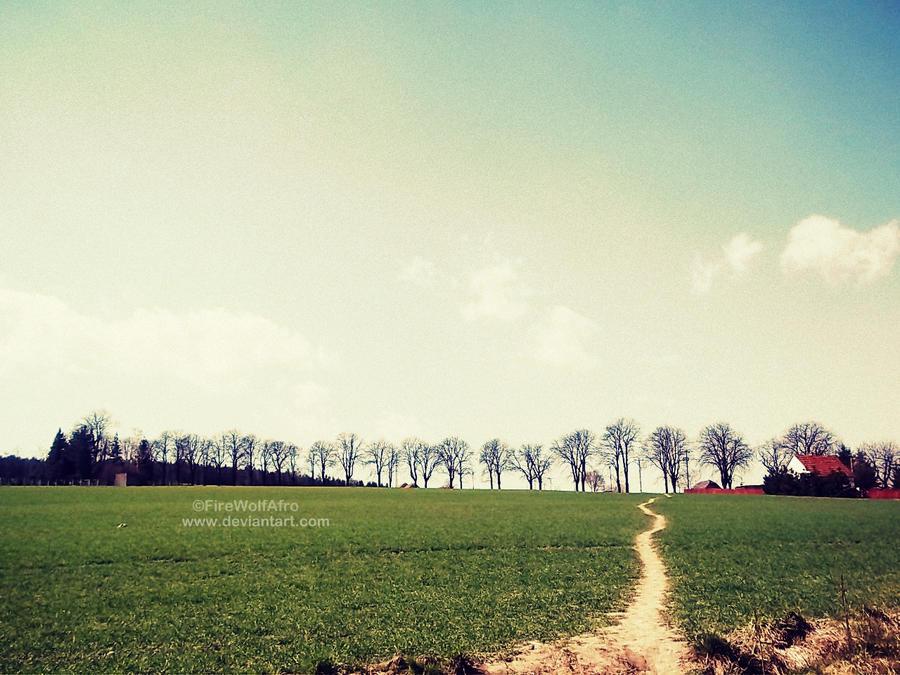 Path by DarkAfi4