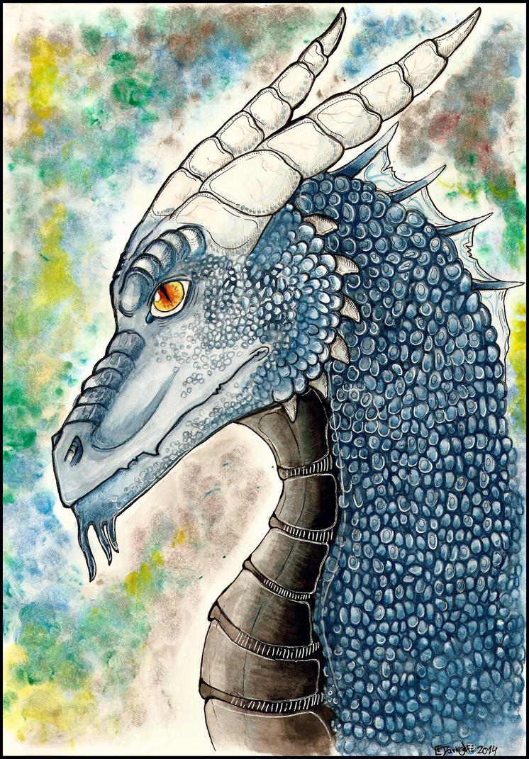 Dragon Profile. by DarkAfi4