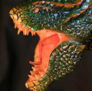 spedreiro's Profile Picture