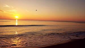 Bright Sun Calm Waters