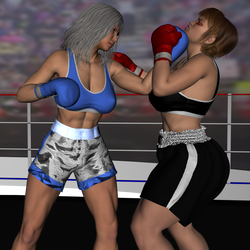 Akio Yamamoto Vs Tamao Silver Past fight 6 by NightmareRacer85
