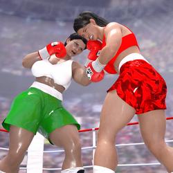 Teressa D VS random Female boxer Test by NightmareRacer85