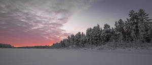 First Light, January