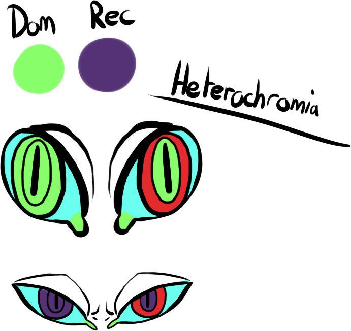 Heterchromia Grem by MrGremble