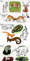 Animal Studies Challenge Day 1-4