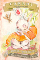 Carrot by miorats