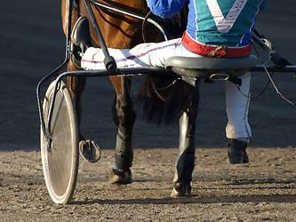 Harness racing by wakedeadman