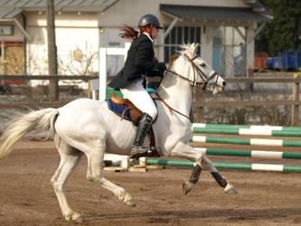 Gallop pony by wakedeadman
