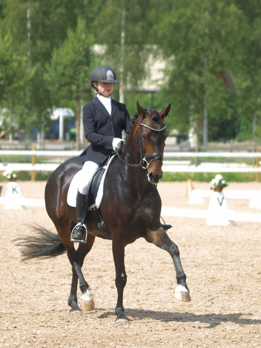 pony mare dressage 2 by wakedeadman