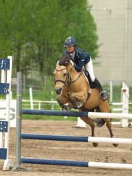 Buckskin pony 2 by wakedeadman
