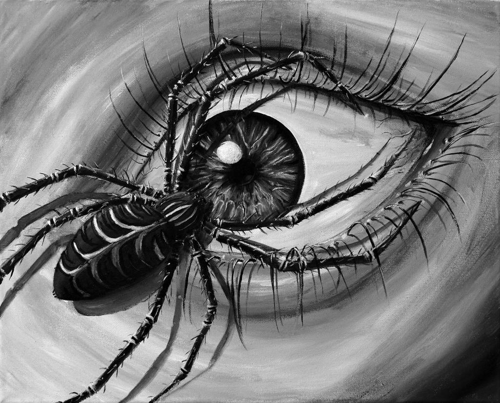 Eye by normanvannorden