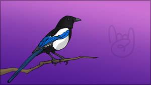 TEC Release Mascot - Magpie