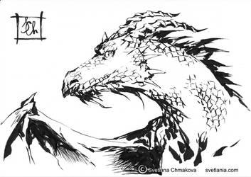 Sketchblog001 Dragon by svetlania