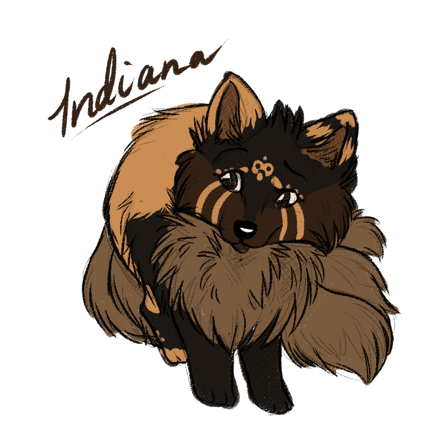 .:Indiana:. Adopted character by Howling-Okami
