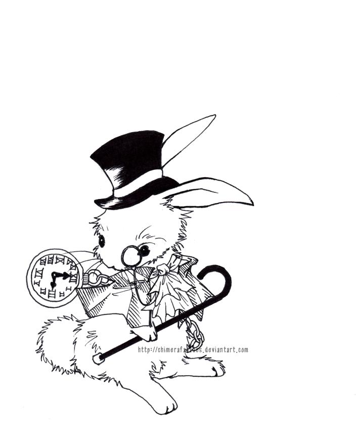...follow the white rabbit. by chimerafacades