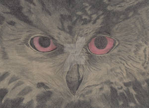 R: Judgy Owl is Judgy