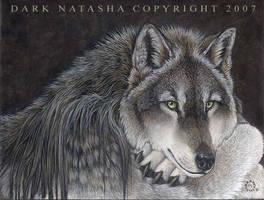Lakota by darknatasha
